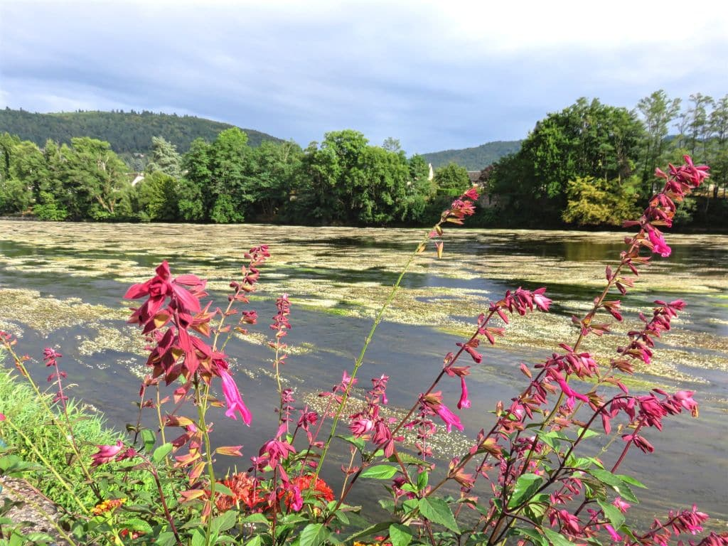 Dordogne river, France, Southern France, calm waters, Argentat, flowers