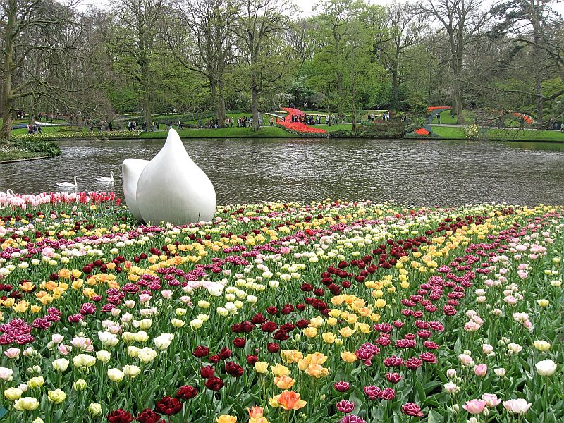 tulips, Keukenhof, Keukenhof gardens, Lisse, the Netherlands. tulip beds, lake
