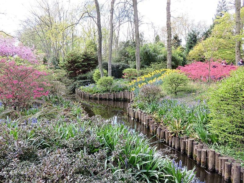 tulips beds, tulips, Keukenhof, Keukenhof gardens, Lisse, the Netherlands, landscaping
