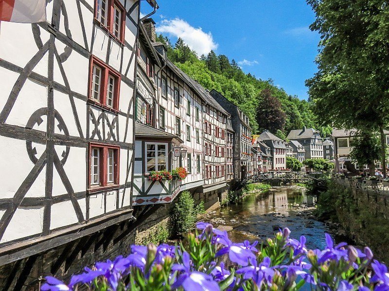blue flowers in the foreground with half-timbered houses along a river and blue sky above, Monschau in Germany